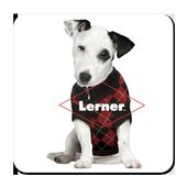 Lerner Digital eReader icon