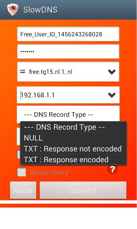 Download VPN Over DNS Tunnel : SlowDNS Latest version apk