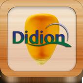 Didion icon