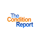 The Condition Report icon