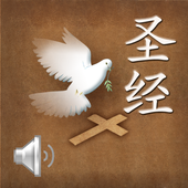 Chinese Bible-Human voice icon