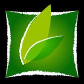 Nasoya icon