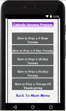 Blessed Mother Novenas apk screenshot
