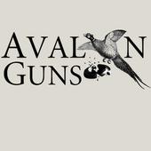 Avalon Guns icon