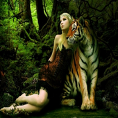Wall Papers Tiger Images icon