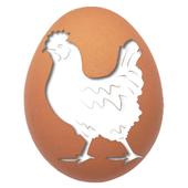 بورصة بيض وكتاكيت السيد خاطر icon