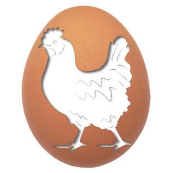 بورصة بيض وكتاكيت السيد خاطر poster