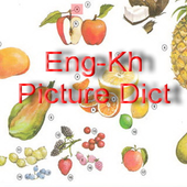 Eng-Kh Picture Dict icon