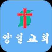 양일교회 icon