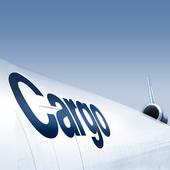 Lufthansa Cargo icon