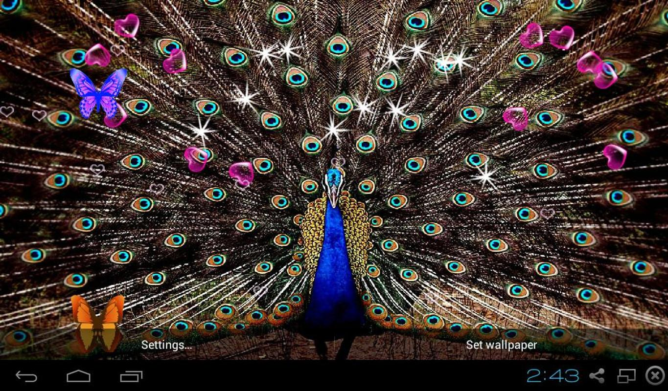 3d Live Wallpapers Free Download For Ipad: 3D Peacocks Live Wallpapers APK Download