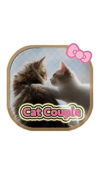 Lovely Cat couple theme poster