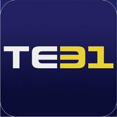TE31 (알지롱) icon