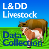 L&DD Data Collection icon