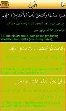 Surah-Ar-Rahman Urdu (MP3) apk screenshot