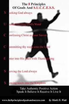 8 Principles Goal&Success LITE poster