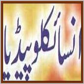 World Encyclopedia Urdu icon