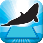 3D LEARNING CARD SEA ANIMALS icon