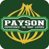 Payson City icon