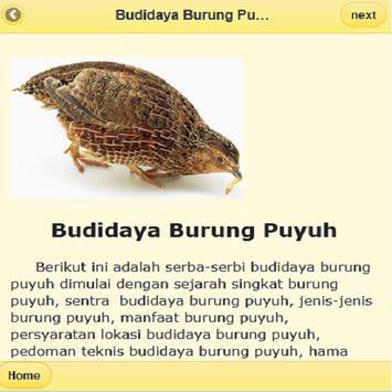 Peluang Usaha Budidaya Ternak apk screenshot