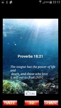 Daily Bible Proverbs Produkt poster