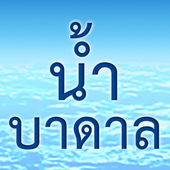 Badan4Thai icon
