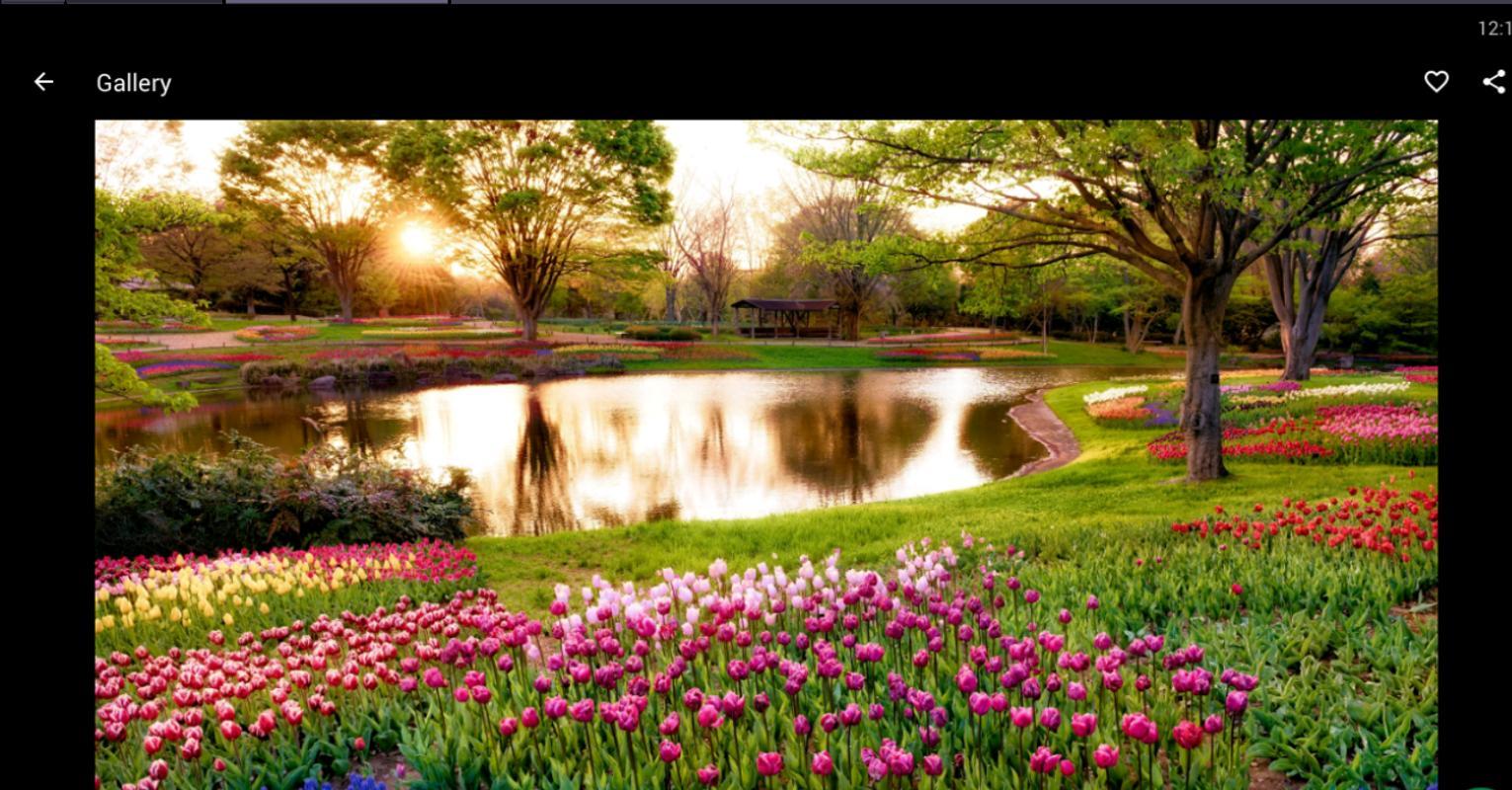 Fondos pantalla primavera hd apk download gratis for Fondo de pantalla primavera