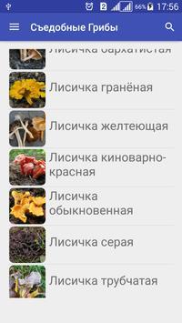 Собирать Грибы Съедобные apk screenshot