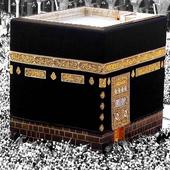 Hac ve Umre Duaları (Unreleased) icon