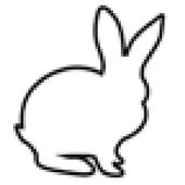 WhiteRabbit icon