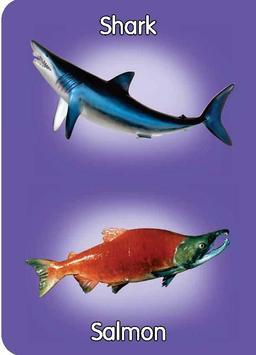 Fish & Sea Creatures Preschool poster