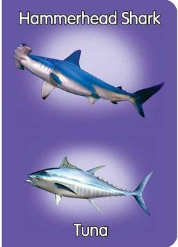 Fish & Sea Creatures Preschool apk screenshot