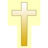 NIV Holy Bible icon