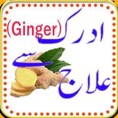 Adrak(Ginger) k Fwaid. icon