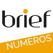 Brief Magazine icon