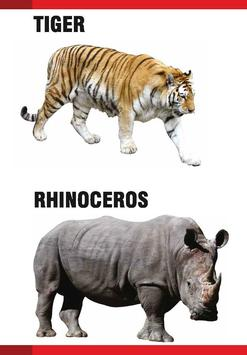 PreSchool Book - Wild Animals poster