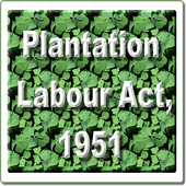 Plantations Labour Act, 1951 icon