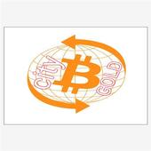 CiTyMaXGOLD icon
