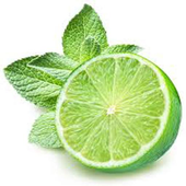 Lime call icon