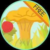 Богатства леса справочник FREE icon