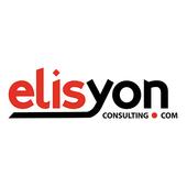 Elisyon consulting icon