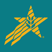 Star Solutions Mobile icon