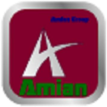 Amian Group poster