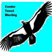 Condor Tweet Blaster (Pro) icon