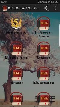 Romanian Bible Version poster