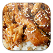 NEW Chicken Slow Cooker 2015 icon