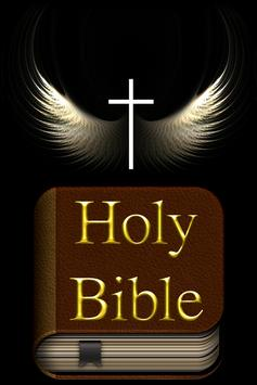 The Holy Bible lite 18 vers. poster