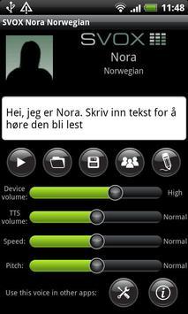 SVOX Norwegian Nora Trial poster