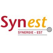 SYNEST icon