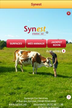 SYNEST poster